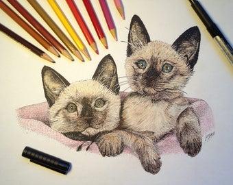 Vintage Siamese Kitten Pen Sketch, Vintage Siamese Kitten Drawing, Siamese Kitten Art, Siamese Kitten Art, Kitten drawing, Kitten art, cats