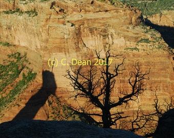 Canyon de Chelly, canyon shadows, late afternoon, 5x7 color photograph, Western decor, wall decor, home decor, color print, Arizona