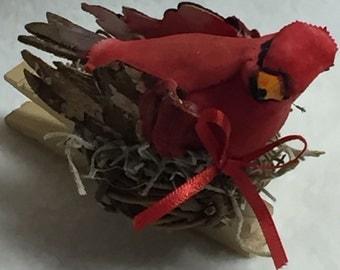 Birdclip (#023)