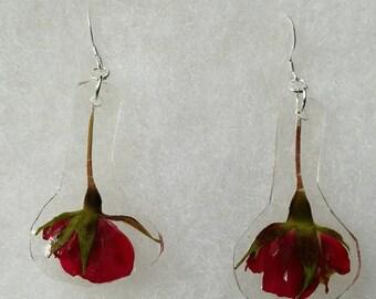 Real pressed miniature roses earrings