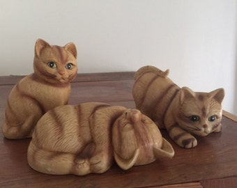 Vintage Yellow Tabby Cats