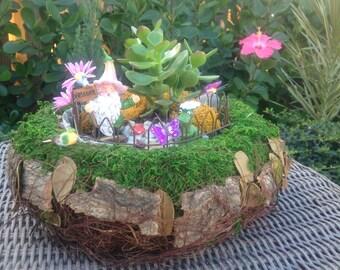 10' round wicker basket with moss