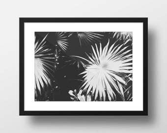 Black and White Tropics Print — Wall Art — Wall Decor