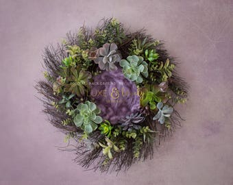 Newborn Photography Prop Digital Background, Mauve Succulent Wreath