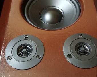"Open Baffle Dual 6"" Speakers"