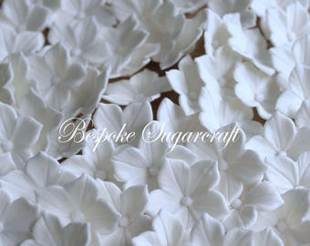 x100 White Sugarcraft Petunia Blossoms for Any Occasion Cake, sugarflower blossoms, edible flowers, gumpaste blossoms, Petunia