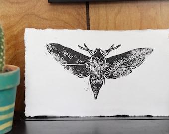 Hawk moth relief print