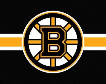 Boston Bruins Vanity Automobile License Plate Car Tag