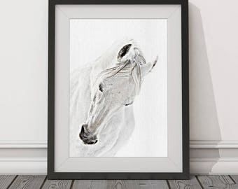 Horse, White Horse, Grey Horse, Pony, Animal, Painting, Digital Download, Art, Print, Poster, Modern, Contemporary,