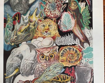 Vintage Zoo Wildlife Elephant Leopard Owl Graphic Art Poster Print
