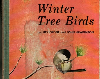Winter Tree Birds - Lucy Ozone and John Hawkinson - 1956 - Vintage Kids Book