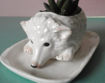 Henry Hedgehog planter