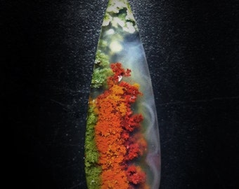 Collector quality Multi color Moss Agate two side long pear Cabochon