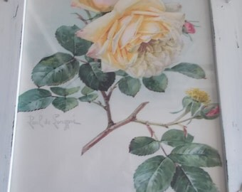 Framed Paul de Longpre Roses Print shabby cottage painted frame