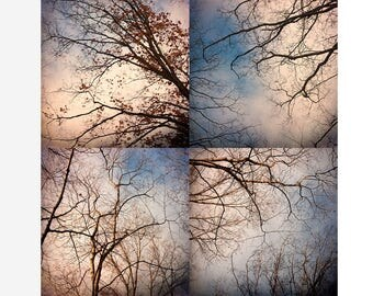 Abstract Tree Print Set, Four Print Set, Modern Wall Decor,  Tree Sky Landscape Photography, Blue White Wall Decor