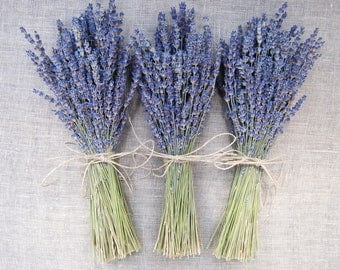 3 Simple English Lavender Bouquets hand tied with a Hemp Twine Bow