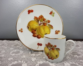 Vintage Bareuther Waldsassen Bavaria Germany Porcelain Plate and Cup Set - Apples, Strawberries, Walnuts, Hazelnuts, Cherries