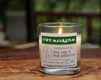 Soy Wax Candle - Mint Eucalyptus Pure Soy Wax Candle - 7.5 oz