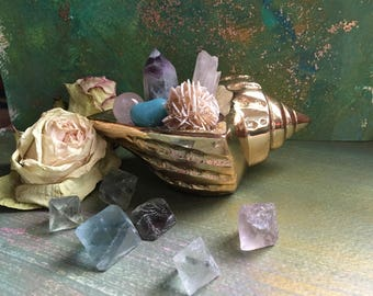 Mermaid's Treasure Crystal Garden Currated by Elkemi