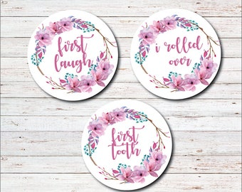Monthly Baby Stickers, Milestone Stickers, Month to Month, Onesie Sticker, Monthly Labels, Baby Girl, Baby Shower Gift, Shabby Chic, Firsts