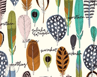 Organic Cotton Fabric, Cloud9 , Bird's Eye View, Feathers, by the half-yard