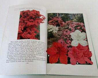 1937 Flower Garden Book Garden Flowers in Color G.A. Stevens Vintage Flower Book Great graphics