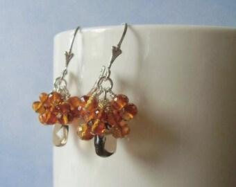 January sale Smoky quartz briolettes, and  citrine rondelle dangle earrings