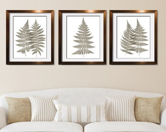 Fern Fantasy Impressions (Series A3) Set of 3 - Art Prints (Featured in Stone Wash) Nature Woodland Inspired