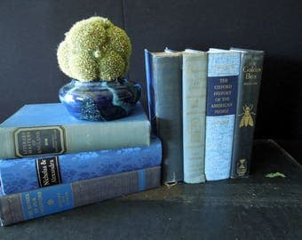 Books by the Foot - Vintage Book Collection in Blue - Instant Collection - Decorative Old Book Set - Dark Blue Books by Color