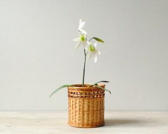 Vintage Bamboo Plant Basket