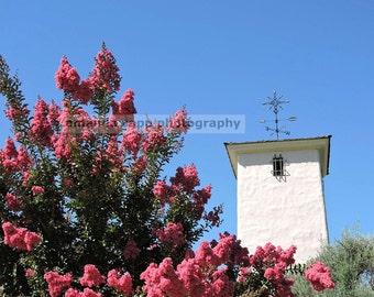 Napa Valley Vineyard photograph