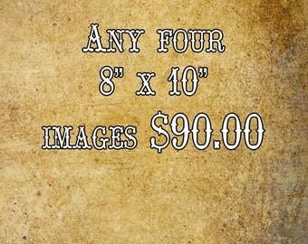 Set of 4 prints, 8 x 10 photo set, save on 8 x 10 print, Print set sale, photograph, FastWinn Photgraphy, sale on photo set, 8 x 10 wall art