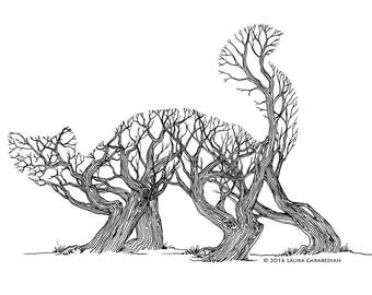 Slinking Trees - ink illustration drawing of a pine marten made of trees in a forest optical illusion art