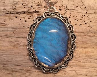Joyería, joyería de mariposa Real, mariposa Wing collar, colgante de Morpho azul, colgante de alas de mariposa, mariposa collar, colgante hecha a mano