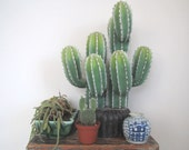 Faux cactus plant/ cactus/ large studio creation/ artificial plants/southwest