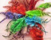 100 verschiedene Sattel Federn grizzly gefärbt 2 bis 3 Zoll Handwerk Federn Fliegenbinden Handwerk