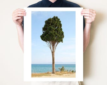 Greece landscape photography print, Kefalonia travel photograph, coastal tree fine art photo. Mediterranean decor, large format print
