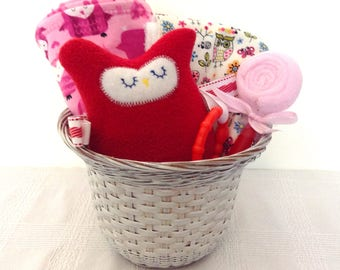 ON SALE Owl Theme Baby Girl Gift Basket