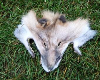 Dakota Gold Fox Face