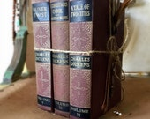 Vintage Collection of Dickens Classics Books Collection of 3