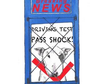 Driving Test Card Bull Terrier