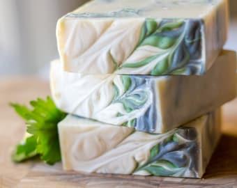 Rosemary Mint Beer and Aloe Shampoo Bars - Vegan Solid Shampoo - Natural Shampoo