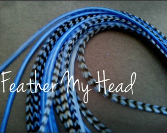Feather Hair Extension - 5 Piece 7 - 9 inches Long (18-23 cm) Grizzly Stripe / Solid Mix - Brights - Light Blue