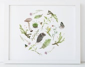 Botanical Mouse Print 5x7 Woodland Nursery Art
