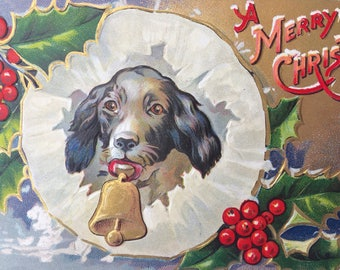 Sweet Edwardian Era Postcard with Spaniel Type Dog