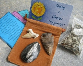 Instant Fossil Set, Instant Fossil Collector Kit, Orthoceras, Fossilized Shark Tooth & Arrowhead with Affirmation, California White Sage