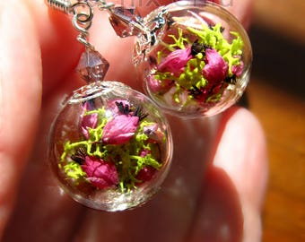 Heather earrings Pink Flower Terrarium Jewelry Real Flower Earrings Crystal Bead Dried Flower Bridesmaid Gift Glass globe earrings Good luck
