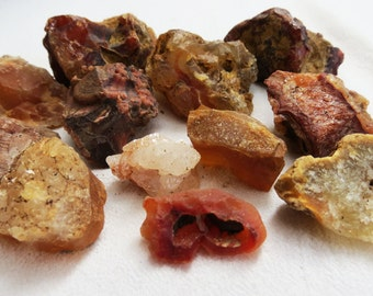 Wild Mountain Oregon Stone Collection Mixed Rock Lot Curiosity Stones Instant Rock Collection