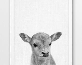 Cow Print, Baby Cow Calf Photo, Farm Animals Photo, Nursery Baby Shower Gift, Cute Animals Black White Photography,Kids Room Printable Decor