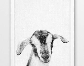 Goat Print, Baby Goat Photo, Farm Animals Photo, Nursery Animal Wall Art, Cute Animals Black White Photography, Kids Room Printable Decor